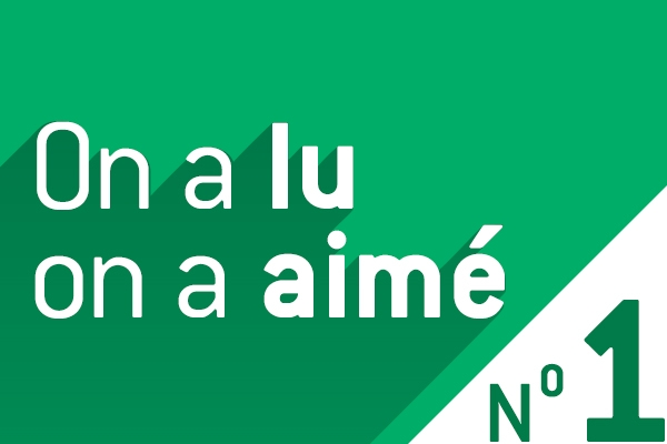 articles accessibilité OKEENEA - best of