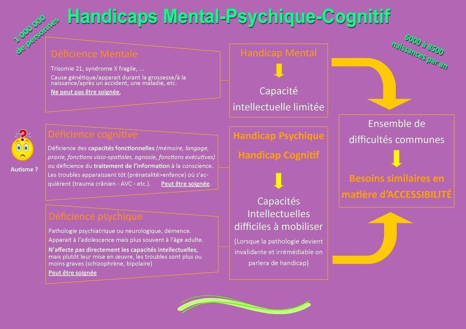 qu'est ce que le handicap mental, cognitif, psychique, SCH2MA EXPLICATIF 6 R2SUMANT L4ARTICLE