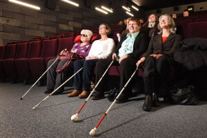 Cinéma accessible, équipements
