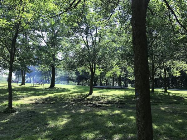 Vue d'un parc au Québec